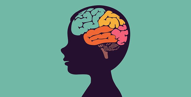 Как обучается мозг — это необходимо знат