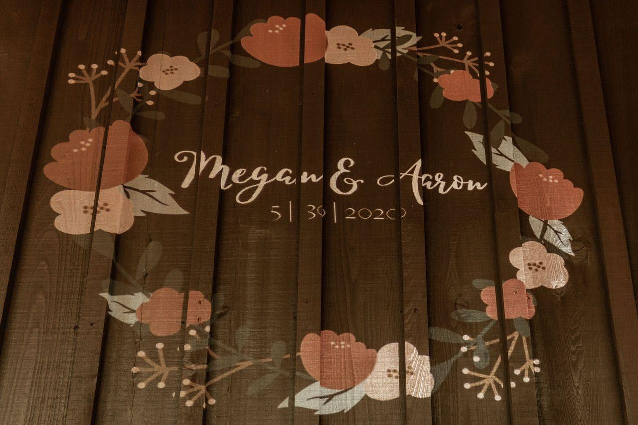 Megan6.jpg