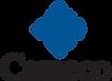 Cameco Resources logo