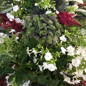 Full Foliage and Flower Spray