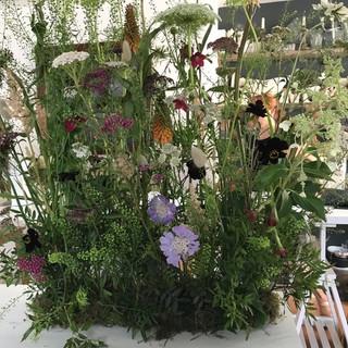 Meadow arrangement