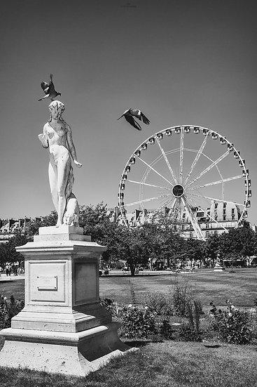 Jardin des Tuileries #1