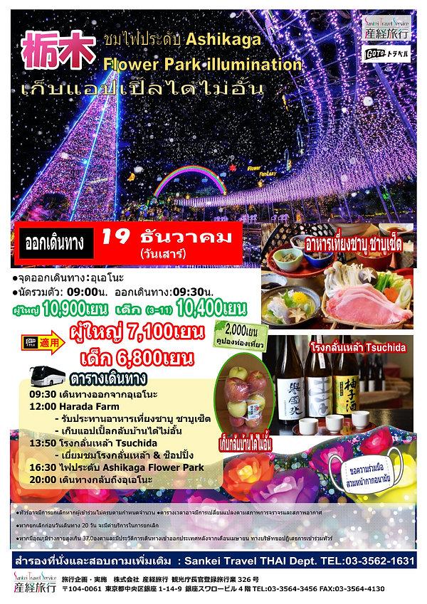 201219 SK09AF あしかがフラワーパークイルミ&りんごつめ放題THAI