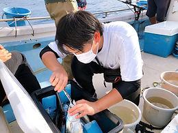 9月網代釣りツアー_201204_22.jpg