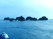 『秘境 銭洲遠征船釣りプラン』の受付を開始しました