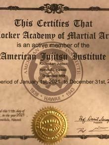 Blocker Academy of Martial Arts is a member of the American Jujitsu Institute (AJI)