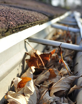Clogged gutters for gutter cleaning