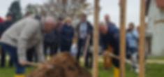 2019-11-12 Ehrenbaumpflanung.jpg