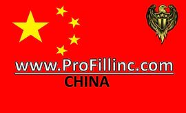 LOGO CHINA.png