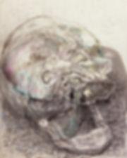 my skull.jpg