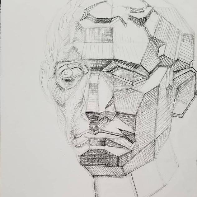 Geometric/organic bust