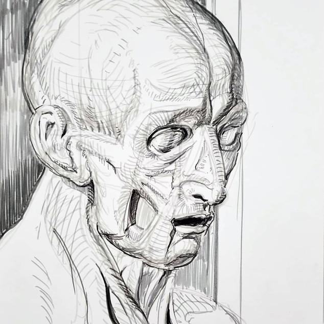 anatomybust