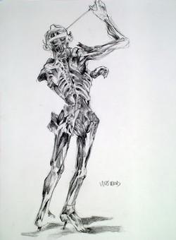 anatomy charcoal.jpg