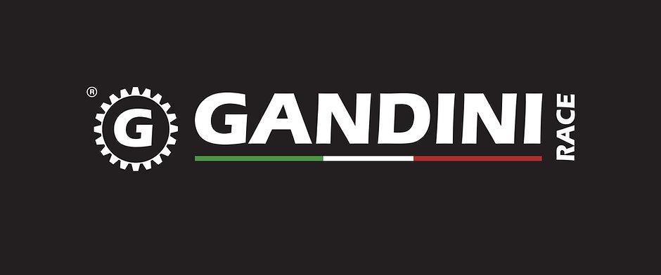 logo_gandini_VECTOR copia.jpg
