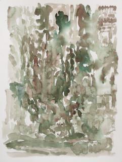 Levend bos, 2010, aquarel, 36x48 cm.