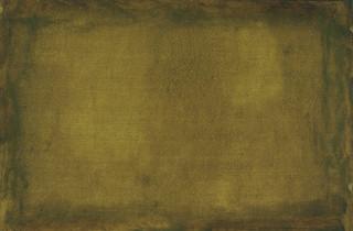 Body (tender will), 2016, oil on paper, 35x50 cm.