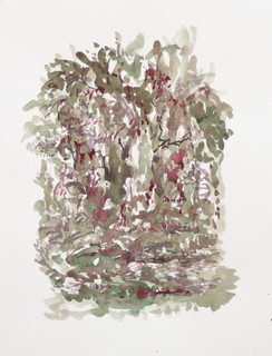 Brandend braambos, 2010, aquarel, 36x48 cm.