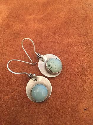 Leslie's earrings