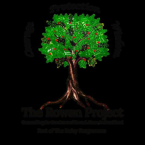 Rowan Project Logo