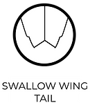 SWALLOW WING.png