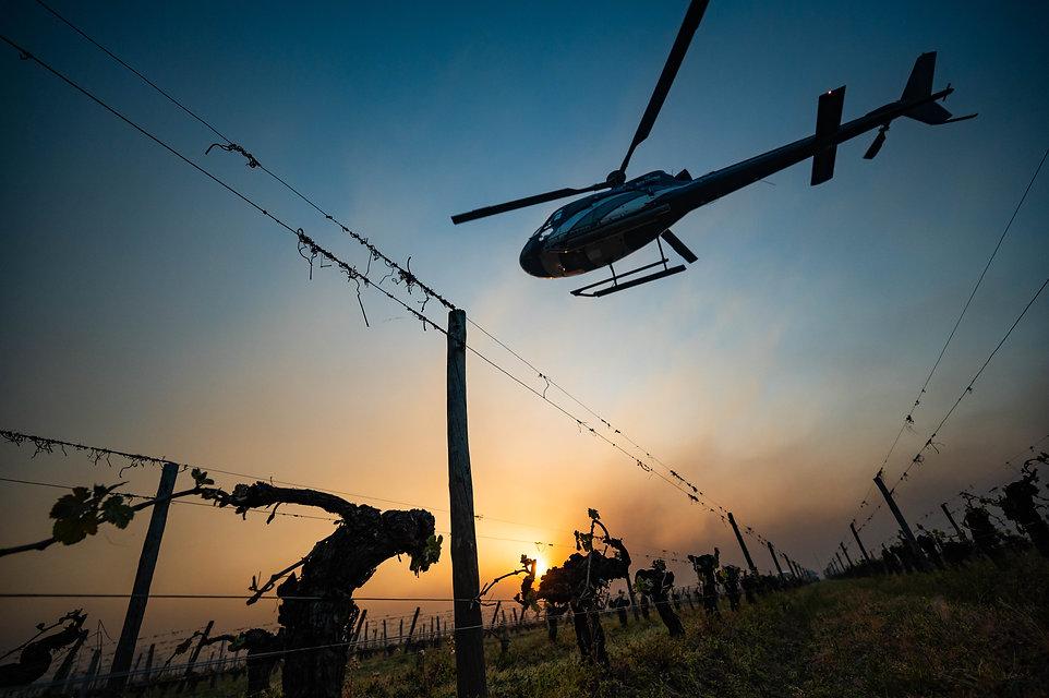 Un hélicoptere au dessus des vignes tente de prévenir les degats du gel