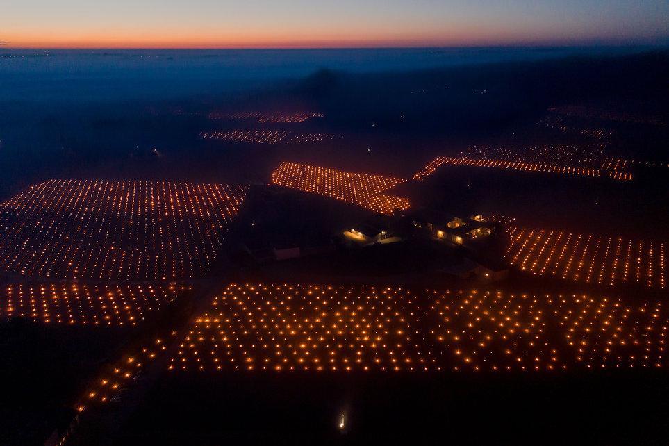 Des centaines de bougies allumées dans le vignoble pour lutter contre le gel