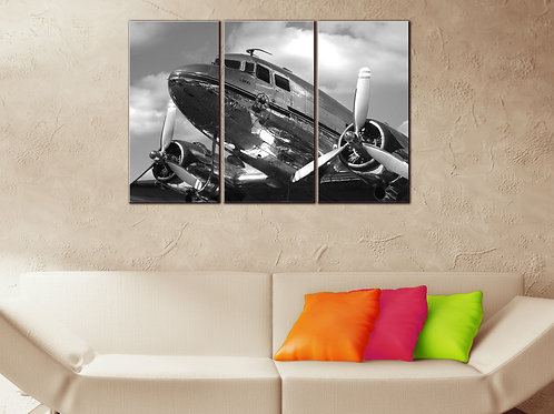 DC-3 Airplane Wall Art Decor Picture Painting Print 22 by 33 in
