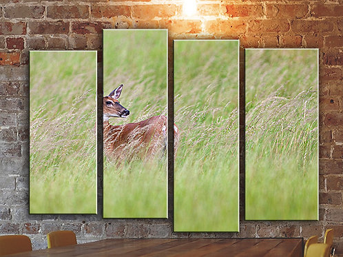 Deer in Wild Wall Art Decor Picture Painting Print Nature Art