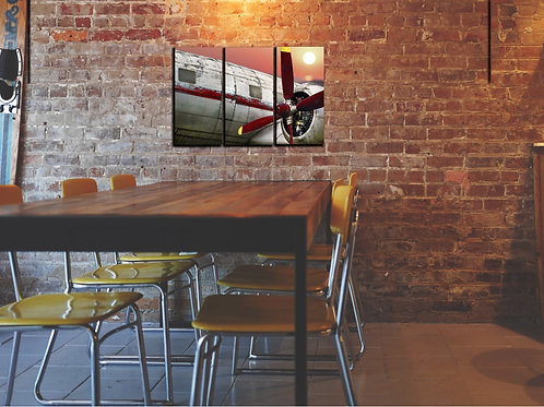 Airplane Propeller Wall Art Decor Picture Painting Print Aviation Art