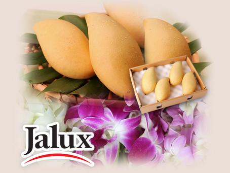 JALUX ASIA Ltd.