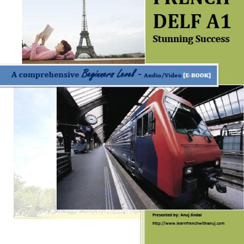 DELF A1 - Stunning Success