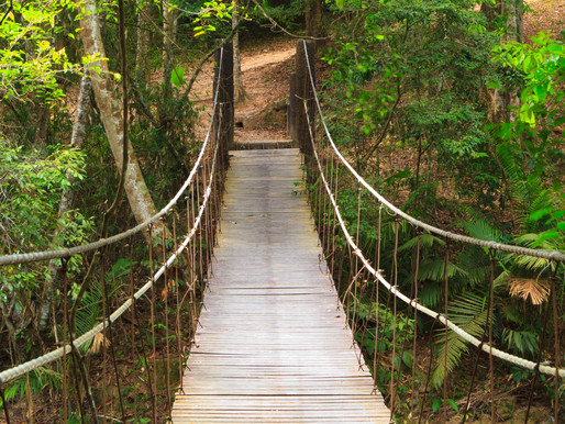 Build A Bridge To Your Customers