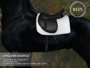 [REIN] English Saddle