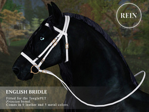 [REIN] English Bridle