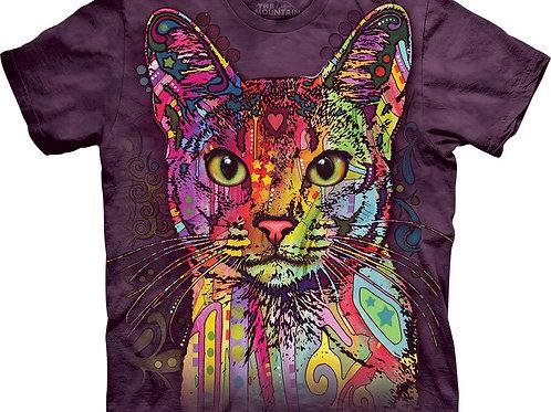 Cat-Abyssinian-Adult