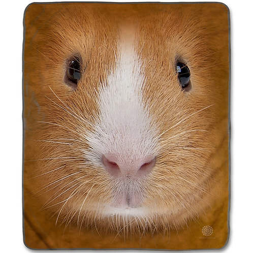 Guinea Pig Face-Adult