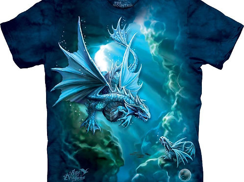 Dragon-Sea Dragon-Adult