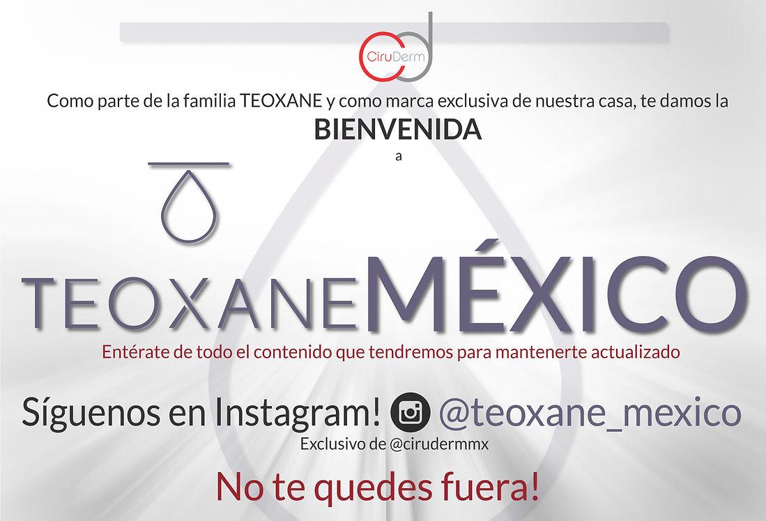 arte-mailing-bienvenida-teoxane-mexico-p