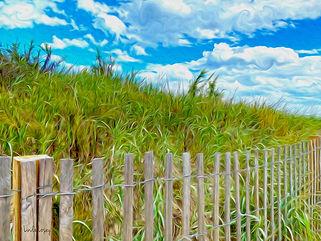 Fall Dunes.jpg