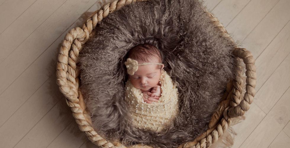 Fotograf Aarau fotografiert das Neugeborene im Korb