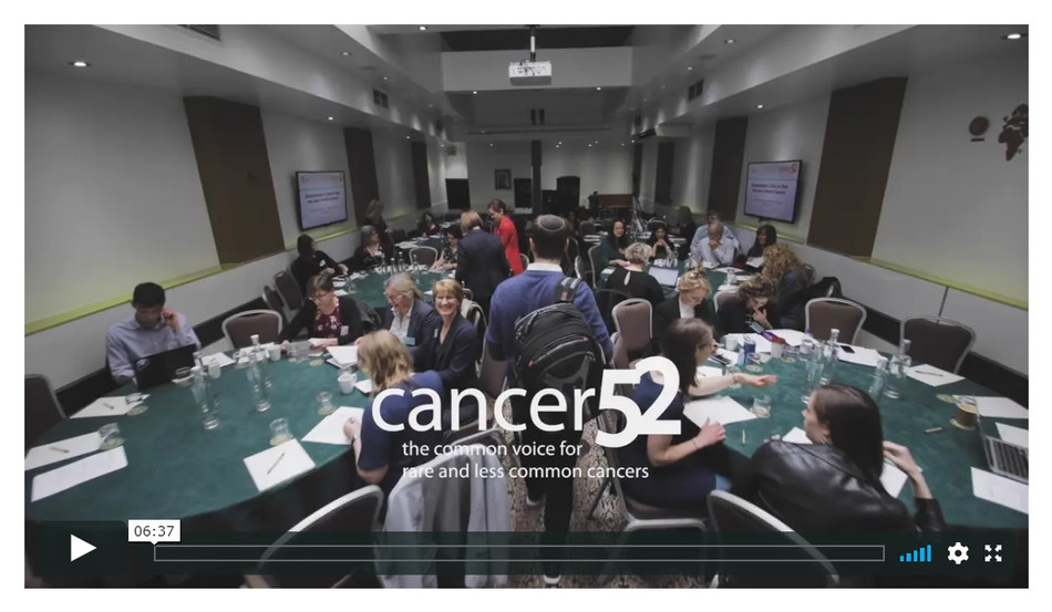 Summary of Cancer52 / PHE Event: Development in Data for Rare and Less Common Cancers