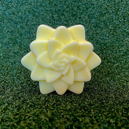 Succulent Citron doux