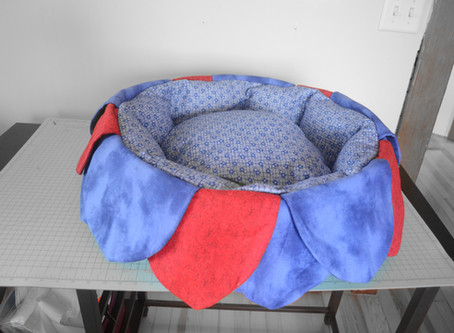 Our very first pet bed.
