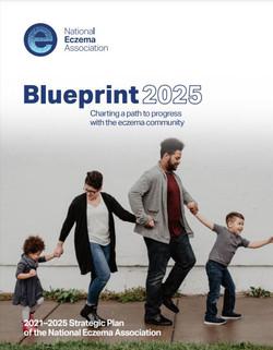 NEA 2025 Strategic Plan