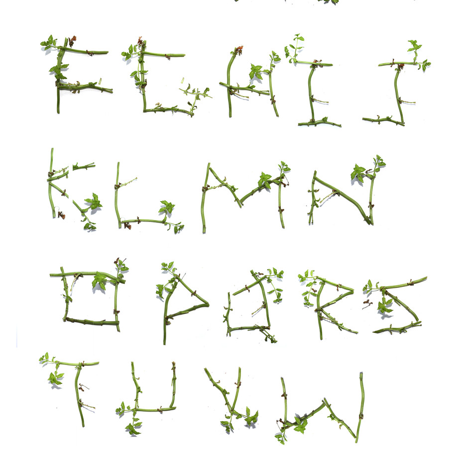 alphabet with sticks.jpg