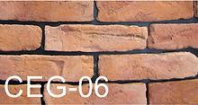 CEG-06.jpg