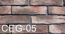CEG-05.jpg