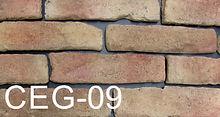 CEG-09.jpg