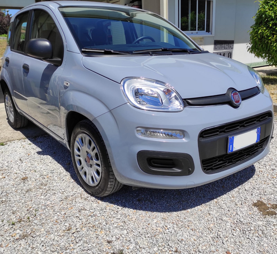 Fiat Panda usata Bracciano roma nord