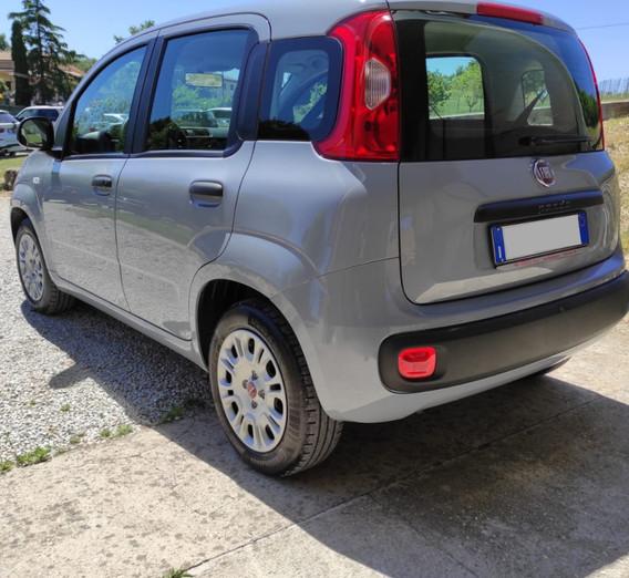 Fiat Panda usata roma nord